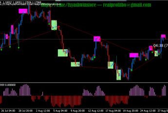 Elastic Trader PRO Indikator